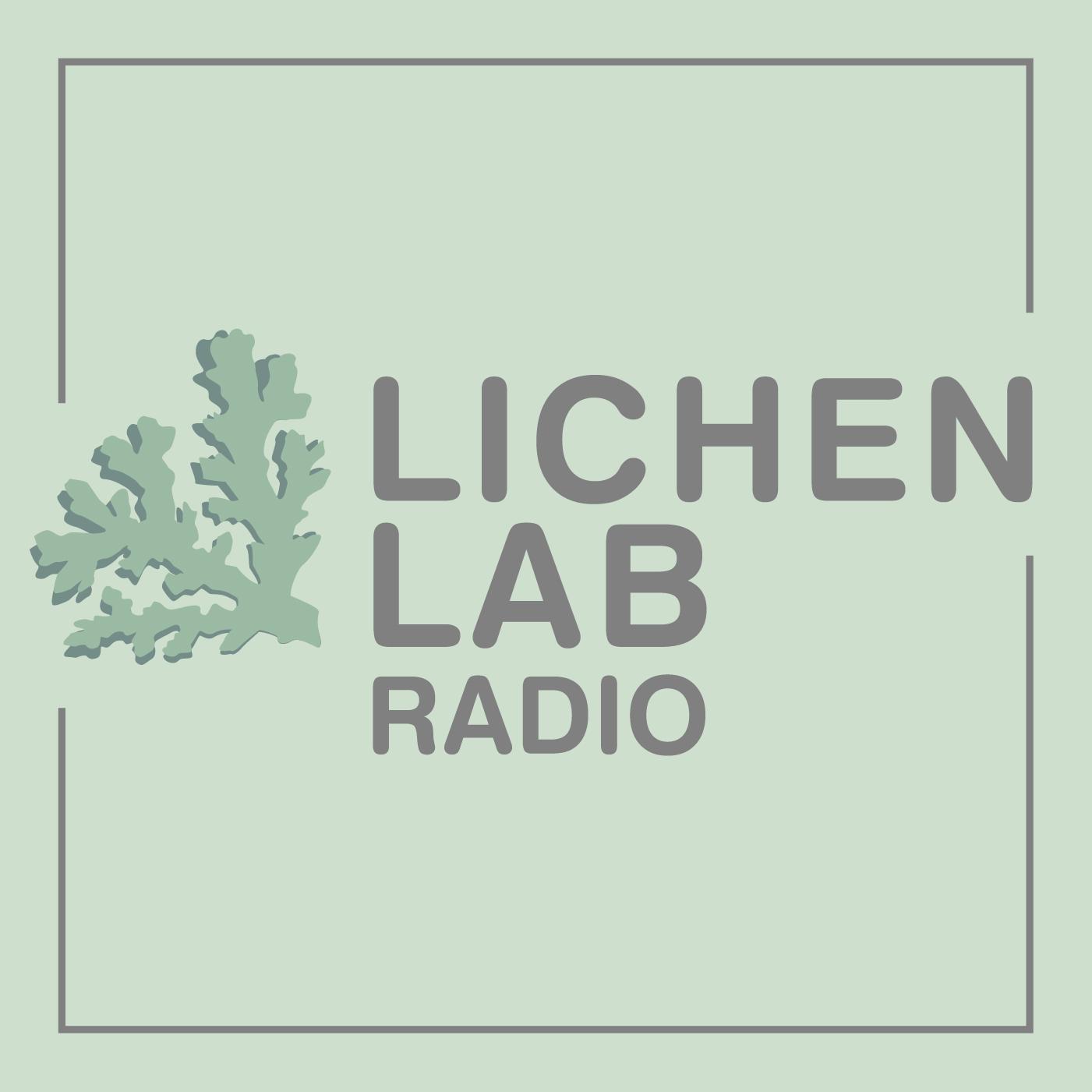 Ep 01: Introducing Level 2: Lichen Lab