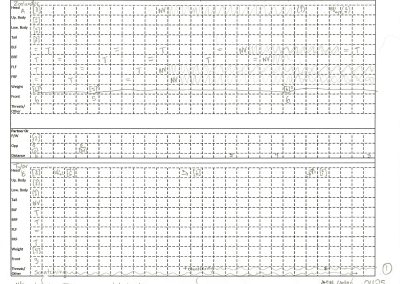 Eshkol-Wachman movement notation