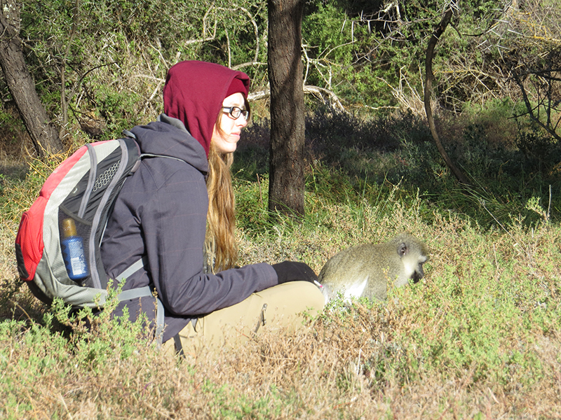 Field work in South Africa studying vervet monkeys